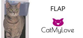Cat flap and doors